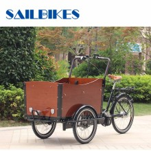 High Stability 3 Wheel Electric Moped Cargo Tricycles