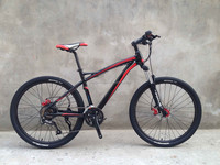 Cheap version electric mountain bike with 36V 250W rear powered motor for Israel market