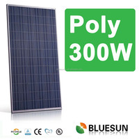 China best pv supplier Bluesun poly 300w solar panel with cheap price per watt