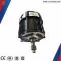 48v 900W for e rickshaw bldc brushless motor for indian market tricycle