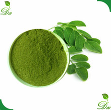 Customer Approved Top Quality Organic Moringa Extract Powder