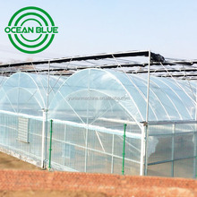 15 years warranty low cost plastic film agriculture Greenhouse for Sale