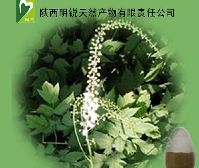 2.5% Triterpenoid saponins Pure natural Black cohosh extract for women health