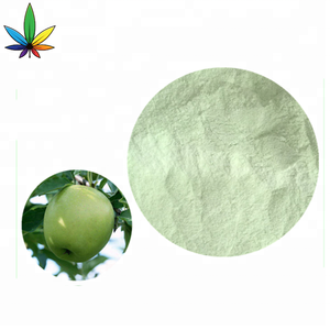 100% Pure Natural Fruit Powder Organic Green Apple Juice Fruit Extract Powder
