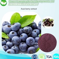 Healthcare Natural Acai Berry/ Brazilian Acai P.E.& Acai Berry Extract