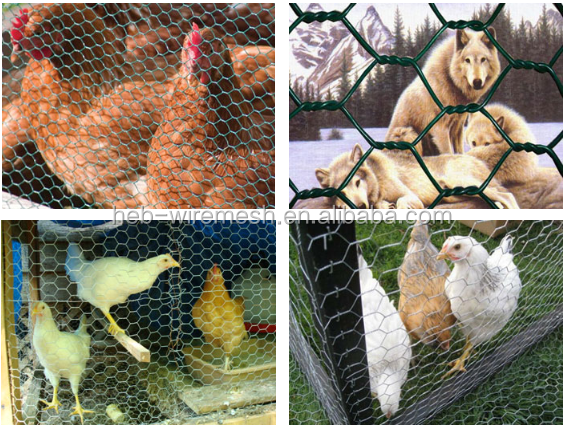 "Hot Sale!!PVC/galvanized 1"" 1/2"" 3/4"" hexagonal wire mesh/insulution mesh chicken wire (anping"