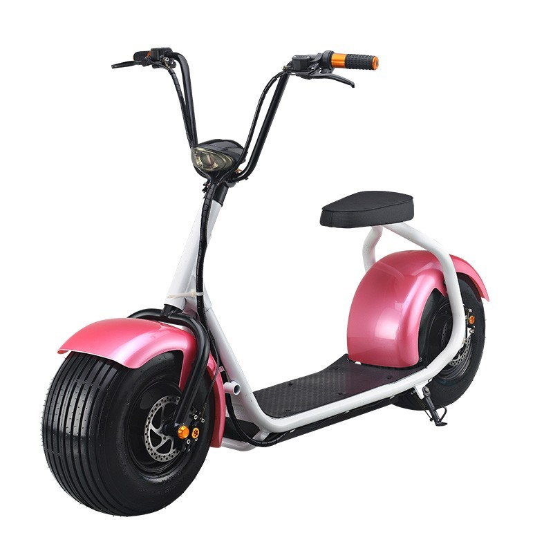 High Quality Cheap Price-Hydraulic disc brakes Electric Scooter/Electric Fat Tire City Autobike with 1000W Brushless Motor