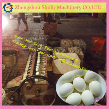 FACTORY PRICE egg cleaning machine/egg washer machine for sale/ 0086-15838061759