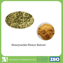 natural chlorogenic acid 5%-25% honeysuckle flower extract Powder
