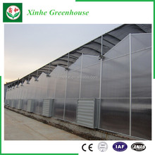 High quality commercial used plastic sheet covering greenhouse for sale