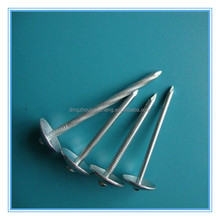 Bwg 16 umbrella head galvanized roofing nails in china factory