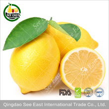New Crop FD Foods Freeze Dry Lemons