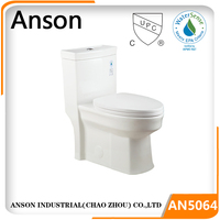 Cupc toilet Sanitary ware bathroom commode one piece toilet Watersense