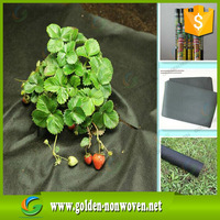 outdoor application UV resistance spunbonded nonwoven PP Spunbond Fabric Nonwoven For Plant Pot Cover