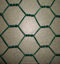 China supply Hexagonal chicken wire mesh/wholesale chicken wire mesh roll