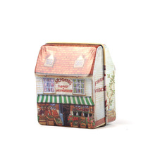 Hot Sale House Shaped Box Jewelry Tin Packaging Box