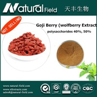 60days money back guarantee New arrival! factory price fda ningxia fresh goji berry