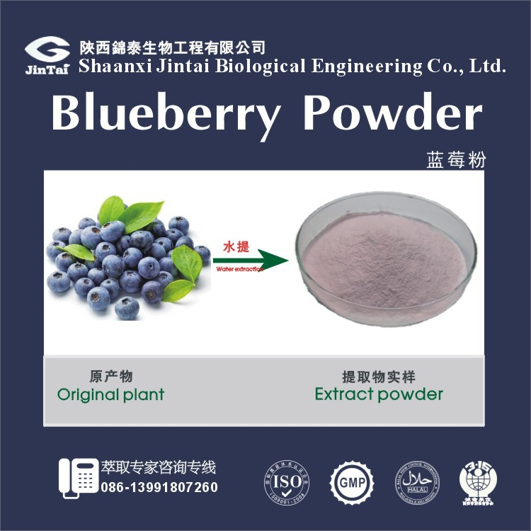 Instant fruit flavored drink powder Blueberry Fruit Powder