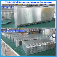 5g 10g ozone air ducting cleaning wall hanging ozone generator for sale