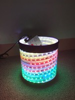 IC WS2811 WS2812B SMD 5050 RGB Magic Digital Dream Color Changeable 30/48/60/144 Leds Led Strip Lights