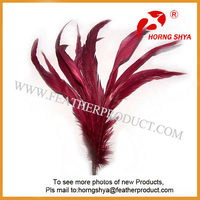 Thin Long Grizzly Rooster Feathers for Hair