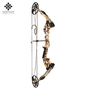 Dropship DS-A118 China manufacturer customized archery equipment both bow and arrows equiment compound limbs