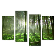 Forest sunshine landscape artwork group canvas printing