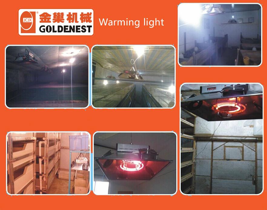 warming lights (1)