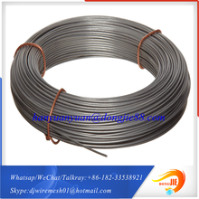 With strong overseas support1mm 6mm thick thin flexible stainless steel wire rope