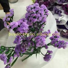 High quality cheap thanksgiving holiday flower with best service
