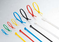 Plastic CE, EN50146 certificated self-locking nylon 66 cable ties Color bag