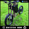 adult 3 wheel electric bicycle motor 500w 24v