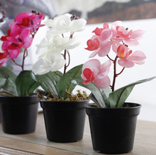 Hot sale mini fabric butterfly orchid pot for home decoration