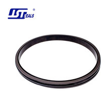 Casing head custom rod ptfe oil seal o NBR rings kit