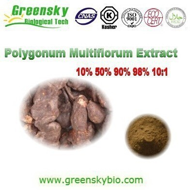 4:1/10:1/20:1 100% Natural and Top quality polygonum multiflorum Thunb extract/he shou wu extract powder