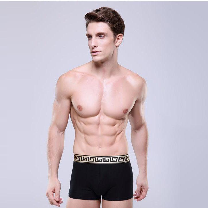 Personalizado modelos hombres ropa interior boxers ropa for Modelos en ropa interior