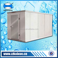 Freezing temperature commercial cold room