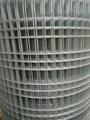 Q195 high quality galvanized 2x2 welded wire mesh for sale