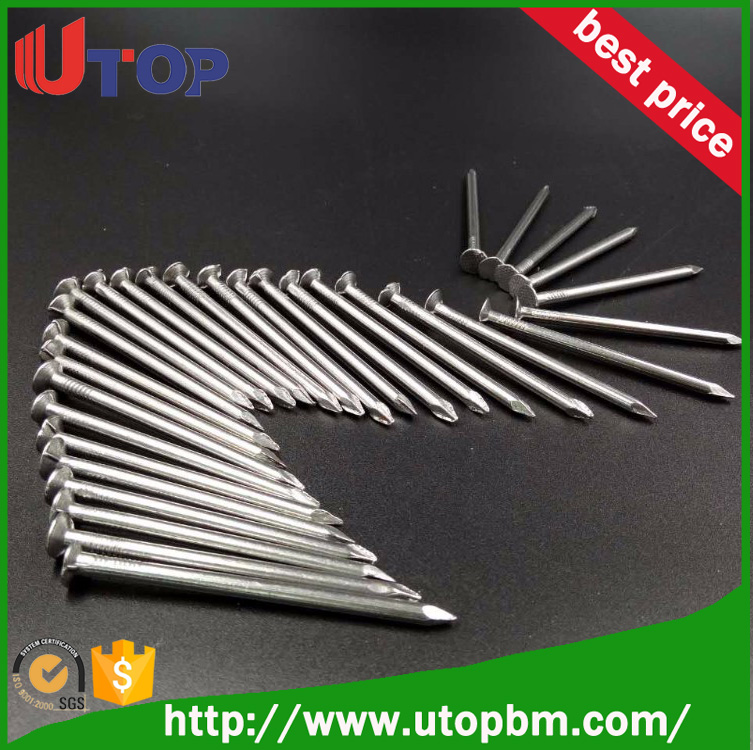 Competitive price Common Round Wire Nails