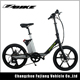Young boys and girls high tech green power city electric bike (TDM14)