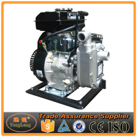 Small Battery Operated 220V Gasoline Engine Small Size Water Pump
