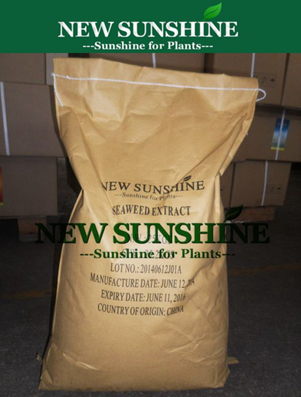 Hot sale Seaweed extract powder with NPK