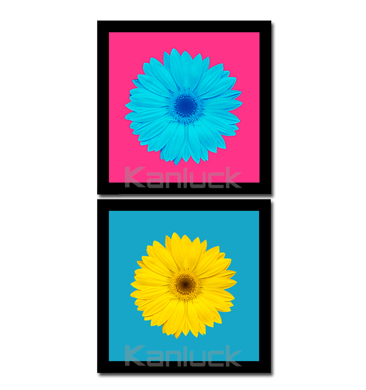 2 Pieces Framed Flower Painting Print Art Set