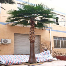 Customeized artificial alsophila spinulosa /cyatheaceae tree with anti-uv for outdoor decotation