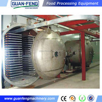 lyophilized fruit / freeze dried durian fruit / meat freeze drying machine