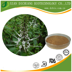 Black Cohosh Extract Powder TLC 10:1 Natural Triterpene Glycosides Free Sample