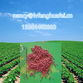 Good Cotton Cheap fertiliser NPK 15-15-15 FERTILISER 10-20-10