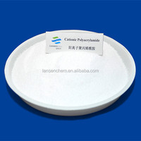 PAM Anionic polyacrylamide white powder for water treatment