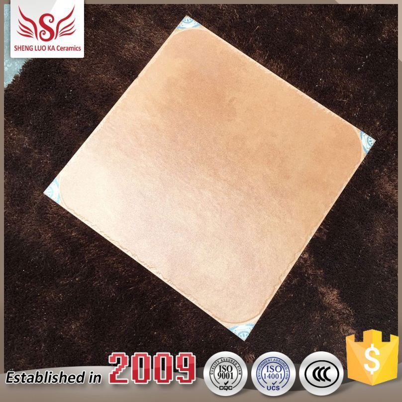 Nti-Skidding Matte Wood Tiles Dolphin Life Porcelain Shiny Floor Tile