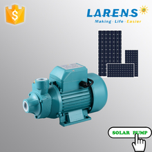 Low head high discharge pump 12v
